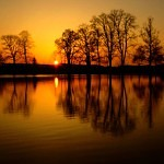 FreeGreatPicture.com-51111-sunset-lake-reflection-of-trees